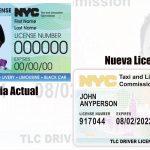 NY : La Comisión de Taxis & Limosinas de emitirá nuevo Diseño Licencia para Taxistas